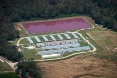 Aerial views of CAFO (Concentrated Animal Feeding Operations) farms. North Carolina, USA.