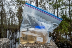 Water samples to be tested from a river affected by Hurricane Florence. North Carolina, USA.