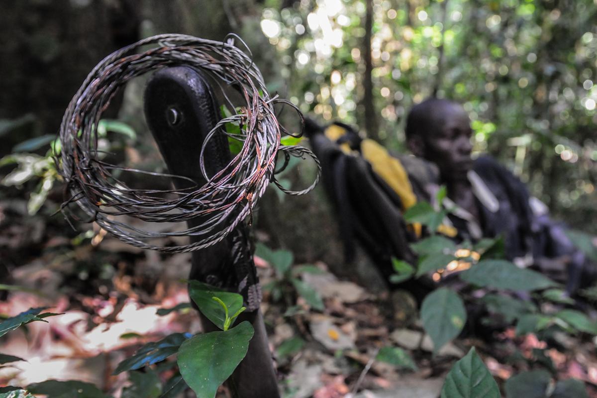 Poaching and Bushmeat Trade