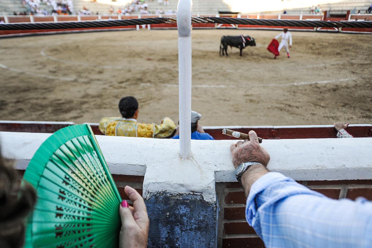 Bullfighting - We Animals Media