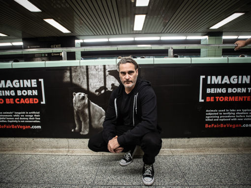 Joaquin Phoenix Shows His Solidarity with Toronto's Be Fair Be Vegan Campaign
