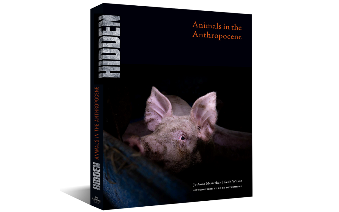 Announcing HIDDEN: Animals in the Anthropocene