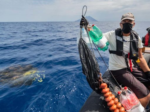 Fish Aggregating Devices in The Mediterranean
